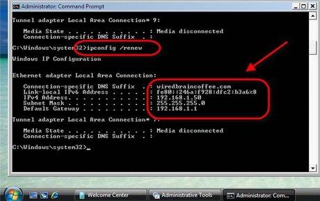 Client đã nhận địa chỉ IP từ DHCP Server mới